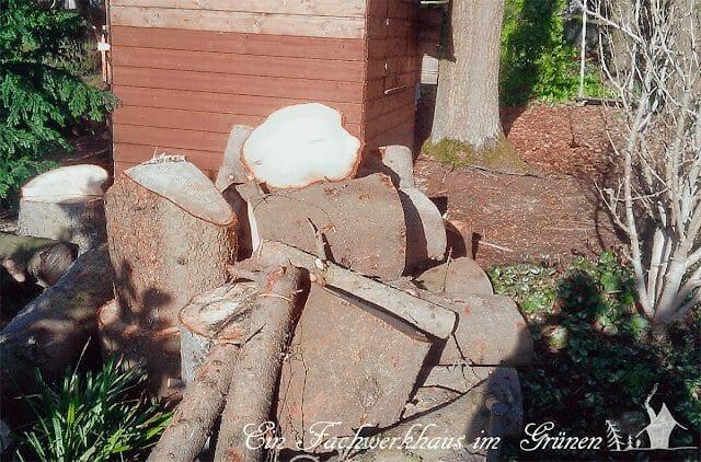 Fichten, Holz, Brennholz