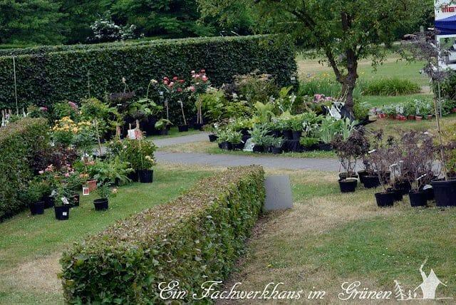 Schloss Dyck, Staudenmarkt, Gartenlust