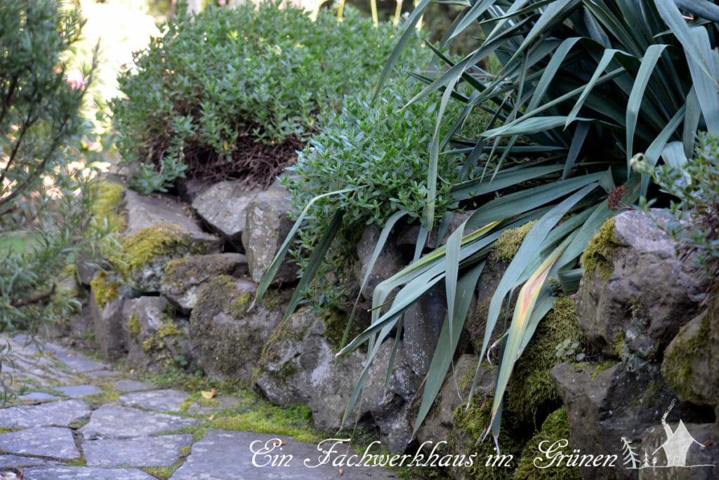 Trockensteinmauer aus Basaltsteinen machen den Garten naturnah.