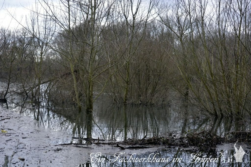 Siegaue, Hochwasser