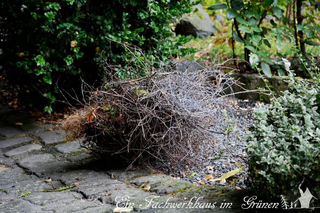 Das Nest, das vom Himmel fiel.