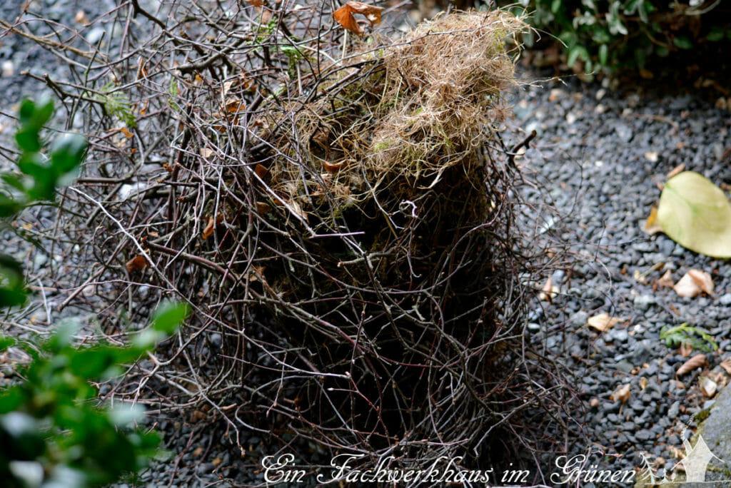 Nest, Elster
