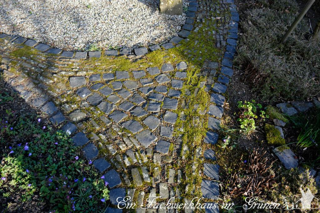 Ein Dreieck lockert die Abzweigung im Gartenweg auf.
