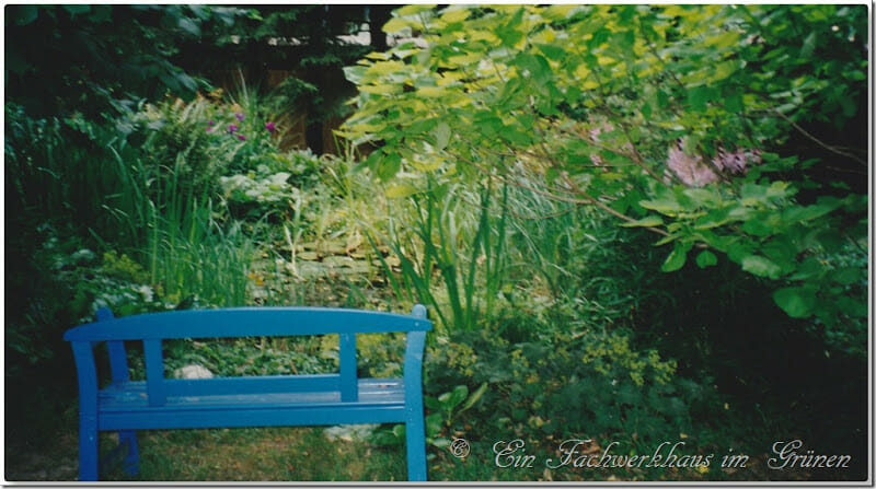 Der alte Gartenteich in unserem Garten mit Friesenbank