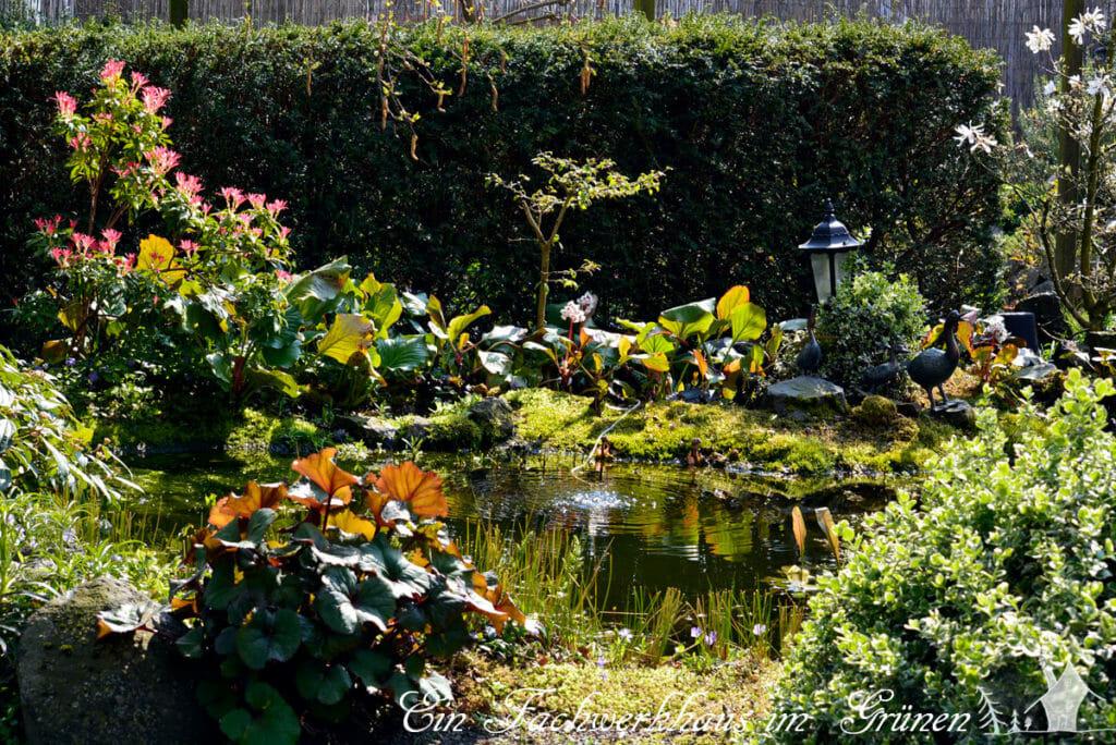 Einen Garten gestalten, dafür gehört für uns auch unbedingt Wasser.