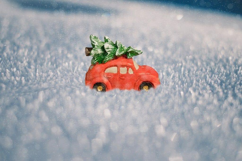 Ein Weihnachtsbaum wird nach Hause gebracht.