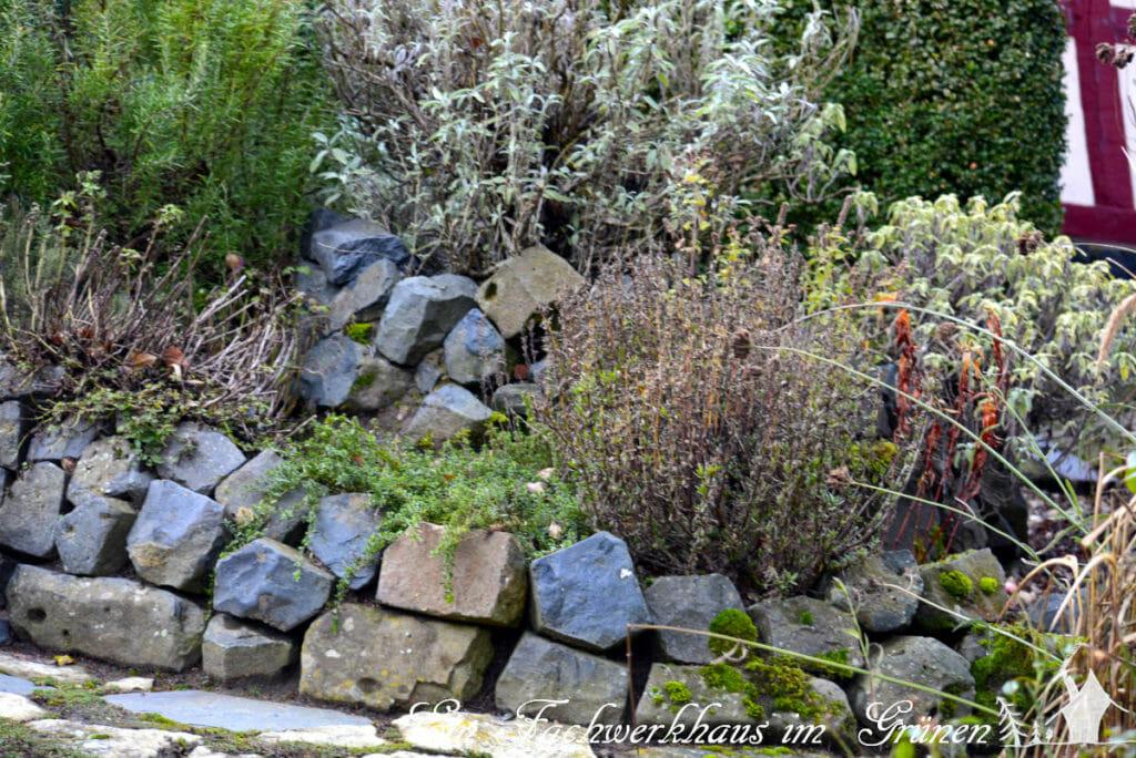 Die Kräuterspirale in unserem Garten.