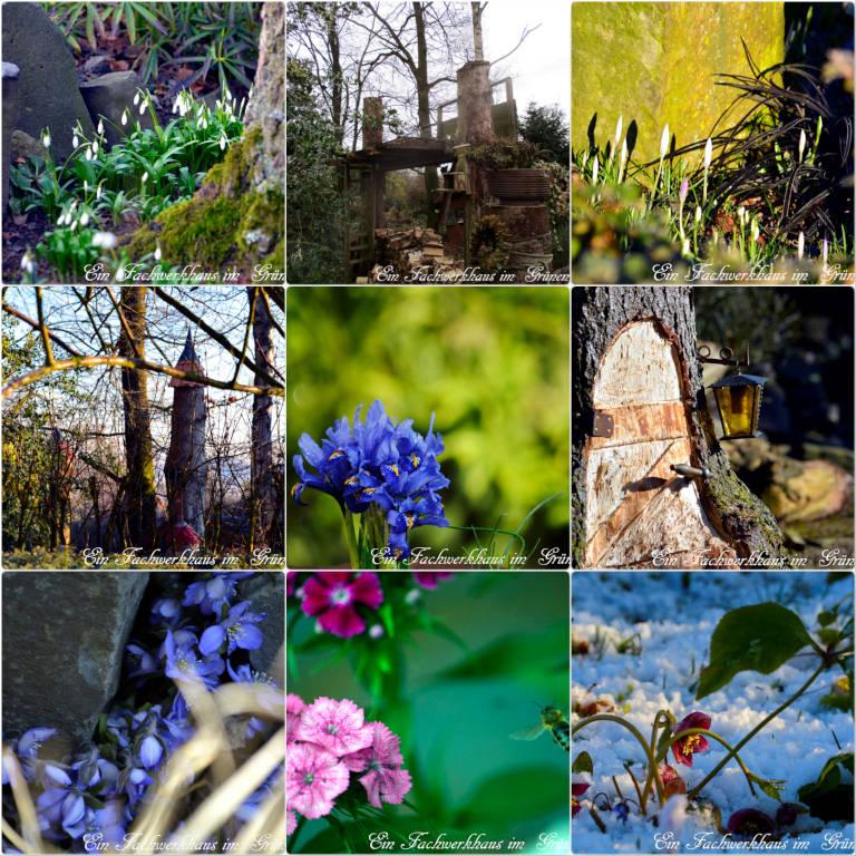 Der Februar in Bildern