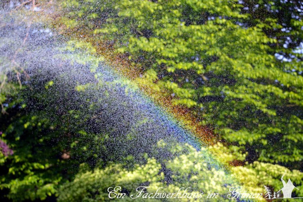 Ein Regenbogen in unserem Garten.
