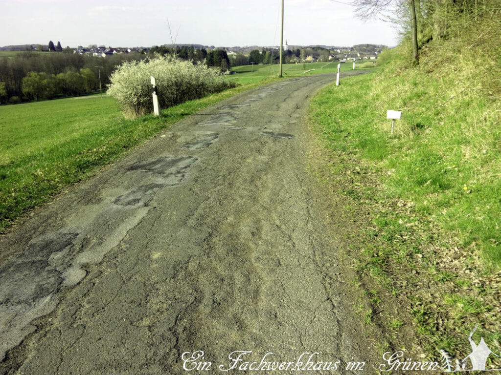 Eine Kreisstraße in der Verbandsgemeinde Asbach.