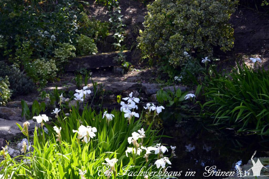 An einem zweiten Teich, tiefer im Garten von Manfred Lucenz und Klaus Bender, findet sich ein versteckter Sitzplatz
