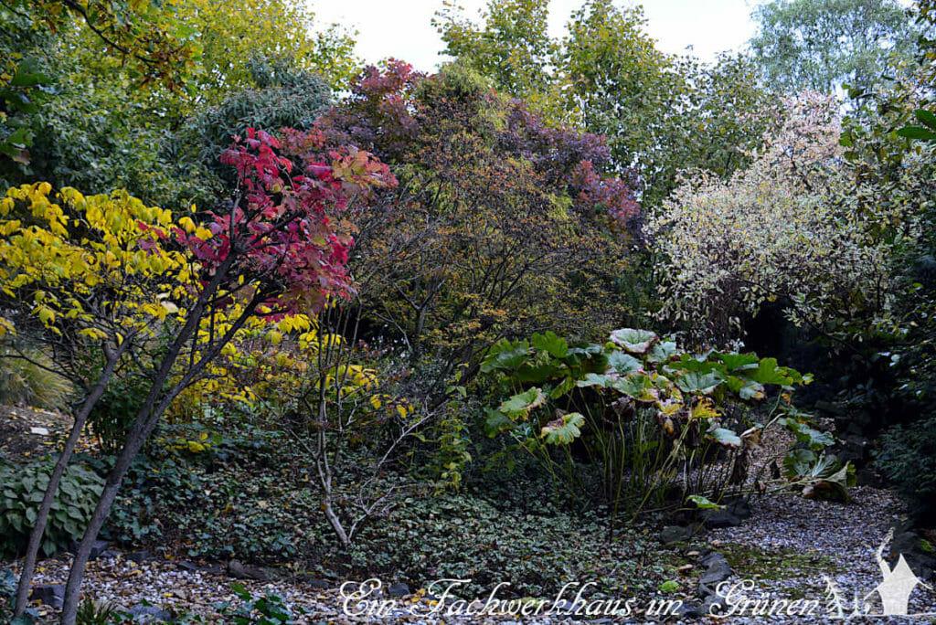 Der Garten ist im Herbst deutlich bunter.