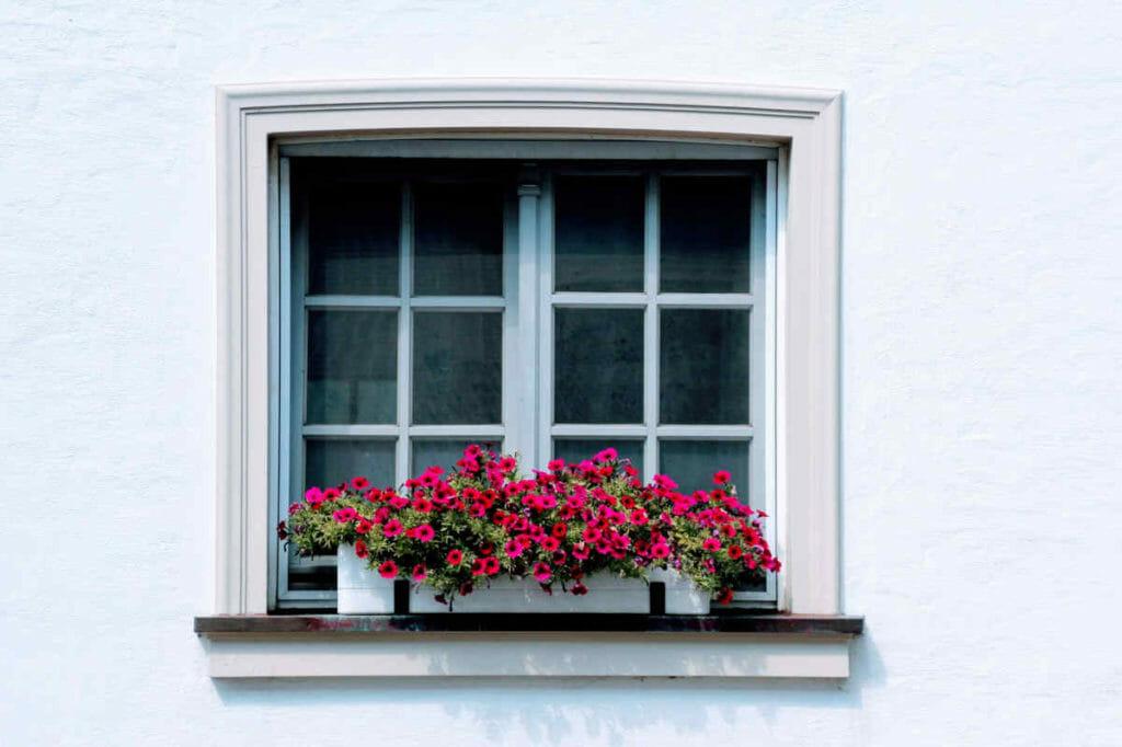 Ein Blumenkasten, mit entsprechender Bepflanzung, ist eine Zierde für jedes Fenster.