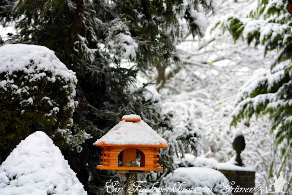 Das Vogelfutterhaus im Winterwunderland
