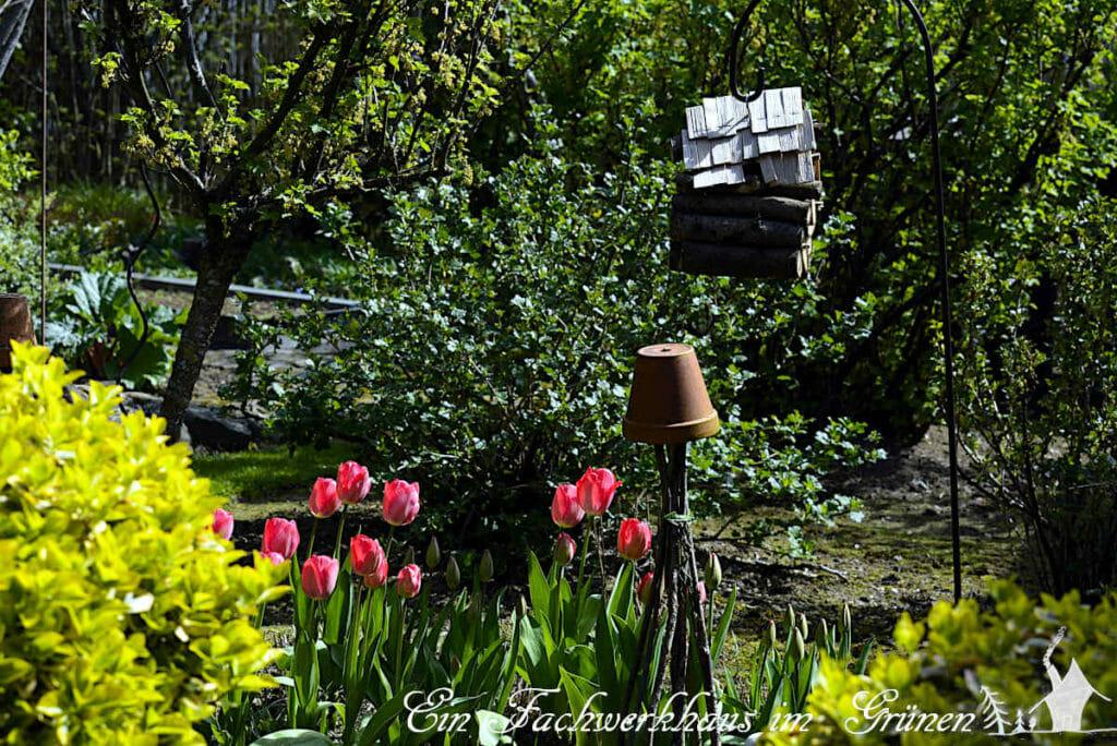 Impressionen aus unserem Garten. Auf dem Bild sieht man auch unser selbst gebasteltes Insektenhoten.