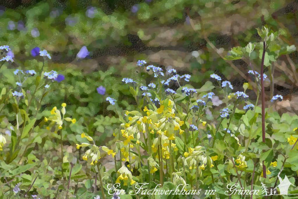 Gelbe Tupfer im Garten.