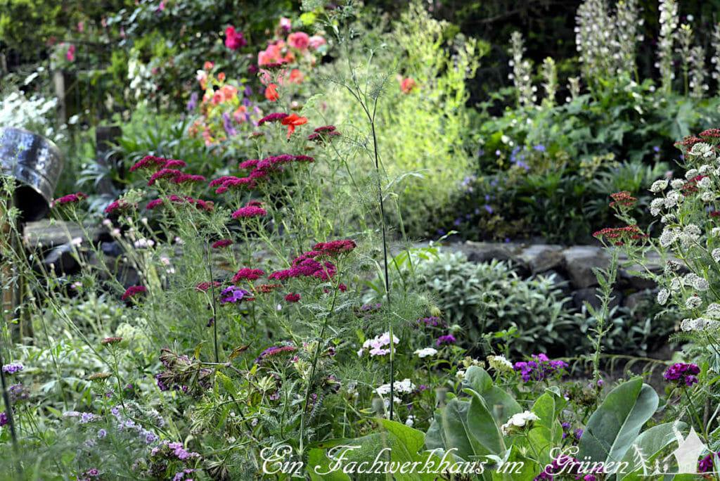 Tolle Idee. Eine Insektenwiese im Garten, sieht auch sehr schön aus.