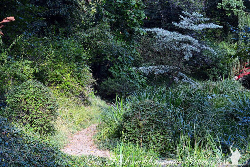 Dennenlohe, der chinesische Garten. Was verbirgt sich hinter der nächsten Biegung?