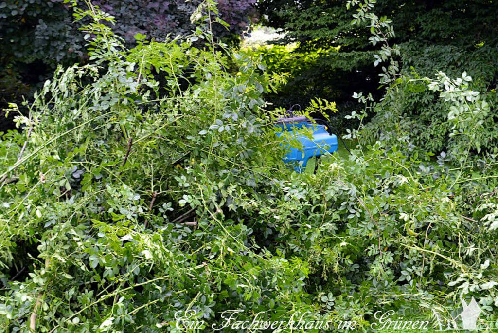 Vor lauter Zweigen ist der Häcksler kaum noch zu sehen.